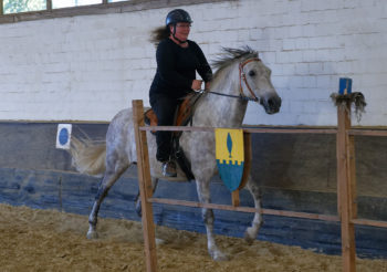 20.09.2020 – Training für die Pferde